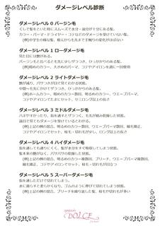 A4ダメ診断_page-0001.jpg